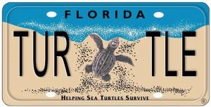 TurtleLicensePlate